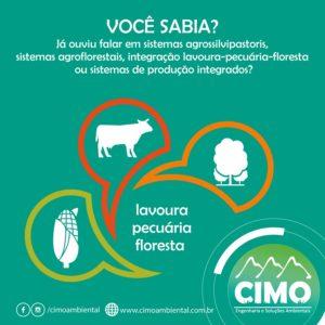 Você Sabia? Sistema Agrosilvipastoris